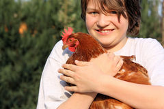 Boy with hen. Hahn and hens on a meadow Royalty Free Stock Image