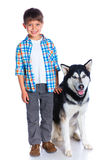 Boy with her dog husky Stock Photography