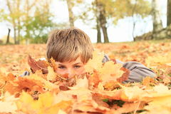Boy hiding behind leaves Stock Image
