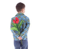 Boy hiding flowers of red tulips behind itself Stock Images