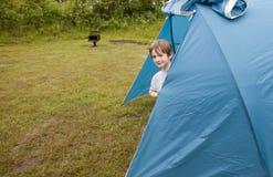 Boy hiding inside tent / Stock Photos