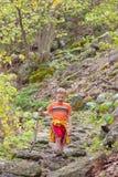 Boy hiking royalty free stock photos