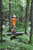 Boy hiking over small bridge Stock Photography