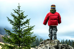 Boy hiking Stock Images