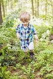 Boy hiking Royalty Free Stock Photo