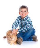 Boy with his cat Stock Images