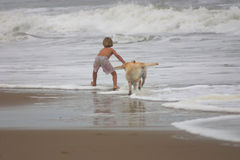 Boy and His Dog. Boy on beach skimboarding with his dog chasing him Stock Photography