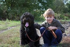 Boy with his dog stock image