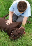 Boy and his dog Royalty Free Stock Photos