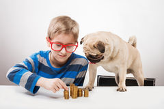 Boy and his dog. Funny boy and his dog looking at piles of coins Royalty Free Stock Photo