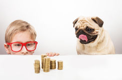Boy and his dog. Funny boy and his dog staring at piles of coins looking over the desk Royalty Free Stock Photo