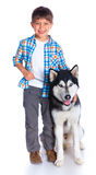 Boy with his dog husky Stock Images
