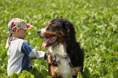 Boy and his dog. Little boy walking with his big dog Stock Images
