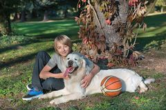 Boy with his dog in the park Stock Photo