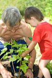 Boy with his grandfather Stock Photo