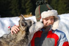 Boy with his husky dog Stock Photo