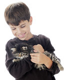 A Boy and His Kitty Stock Photo