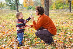 Boy with his mother in autum park Stock Image