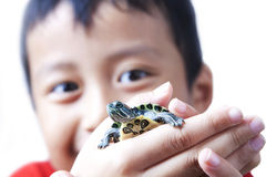 Boy with his pet Royalty Free Stock Photography