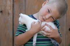Boy and his pet Stock Image