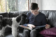 Boy and his poodle dog looking photo album royalty free stock image