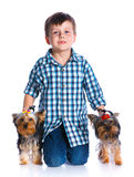 Boy with his Yorkshire terrier. Cute boy with his two Yorkshire terrier smiling at camera on isolated white background Stock Photos