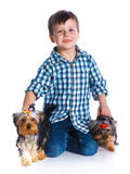 Boy with his Yorkshire terriers Royalty Free Stock Photo