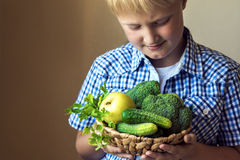 Boy hold basket with green vegetables royalty free stock photo