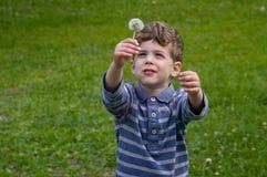 Boy hold dandelion overhead stock images