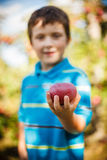 Boy holding an apple Royalty Free Stock Images