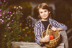 Boy holding a basket of fruit in the garden Royalty Free Stock Photography