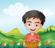 A boy holding a basket of strawberries Stock Photos