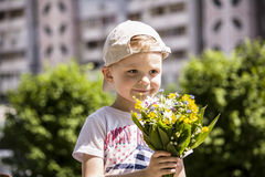 Boy holding a bouquet of wild flowers Stock Images