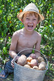 Boy holding bucket of potatoes Royalty Free Stock Images