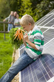 Boy holding bunch of carrots near large solar panels with family in background Royalty Free Stock Image