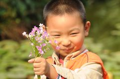 Boy holding a bunch of clover flowers Royalty Free Stock Images