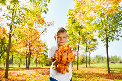 Boy holding bunch of leaves in the forest Royalty Free Stock Photography