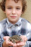 Boy holding CA native toad. Boy happy to have found and holding a huge California native toad Stock Photography