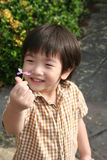 Boy Holding Flower Stock Photo