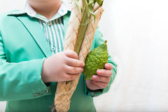 Boy holding the Four Species on Sukkot Stock Images