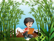 A boy holding a frame at the rainforest Stock Images