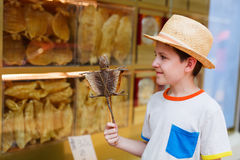 Boy holding gecko on stick Royalty Free Stock Image