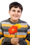 Boy holding gerbera Stock Photography