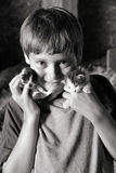 Boy holding kittens. Young boy holding two kittens and smiling Stock Image