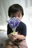 Boy holding lavender. Boy sitting & holding lavender Royalty Free Stock Image