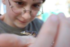 Boy holding lizard Stock Image