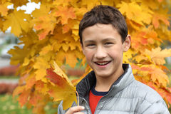 Boy holding a maple leaf Stock Photo