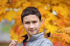 Boy holding a maple leaf Royalty Free Stock Photo