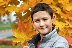 Boy holding a maple leaf Stock Photo