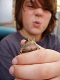 Boy holding out toad. Young boy holding out toad and making silly face royalty free stock photos